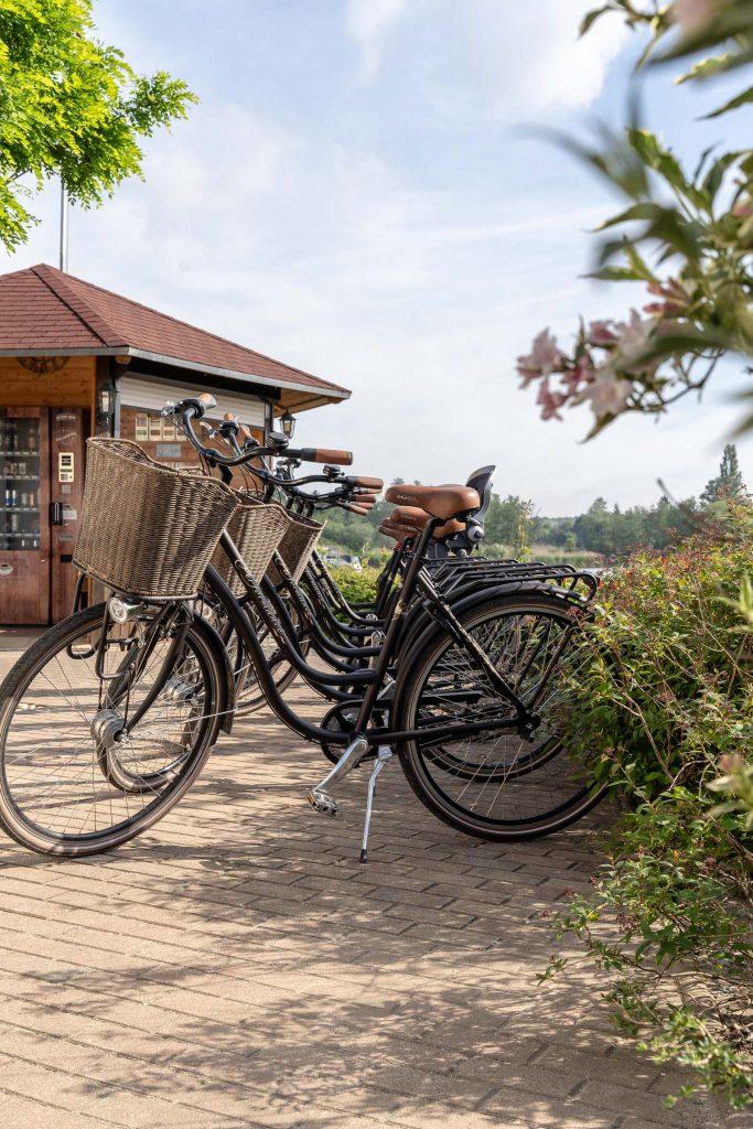 Erlebnisdorf Elbe Parey Freizeit Fahrradverleih